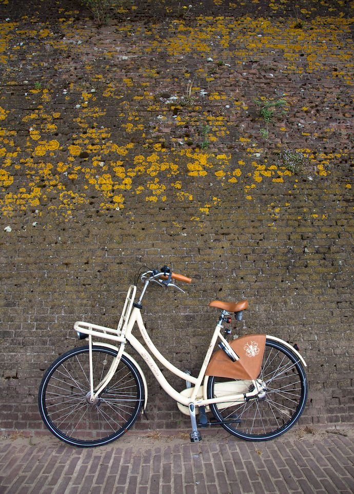 biking-holland-white-bike-share