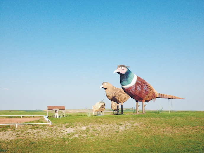 enchanted highway pheasants