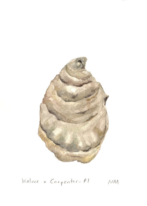 walrus-carepenter-oyster-ri-painting
