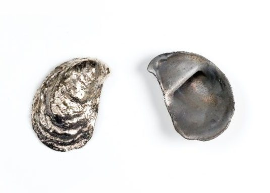 Oyster Shell Bottle Opener