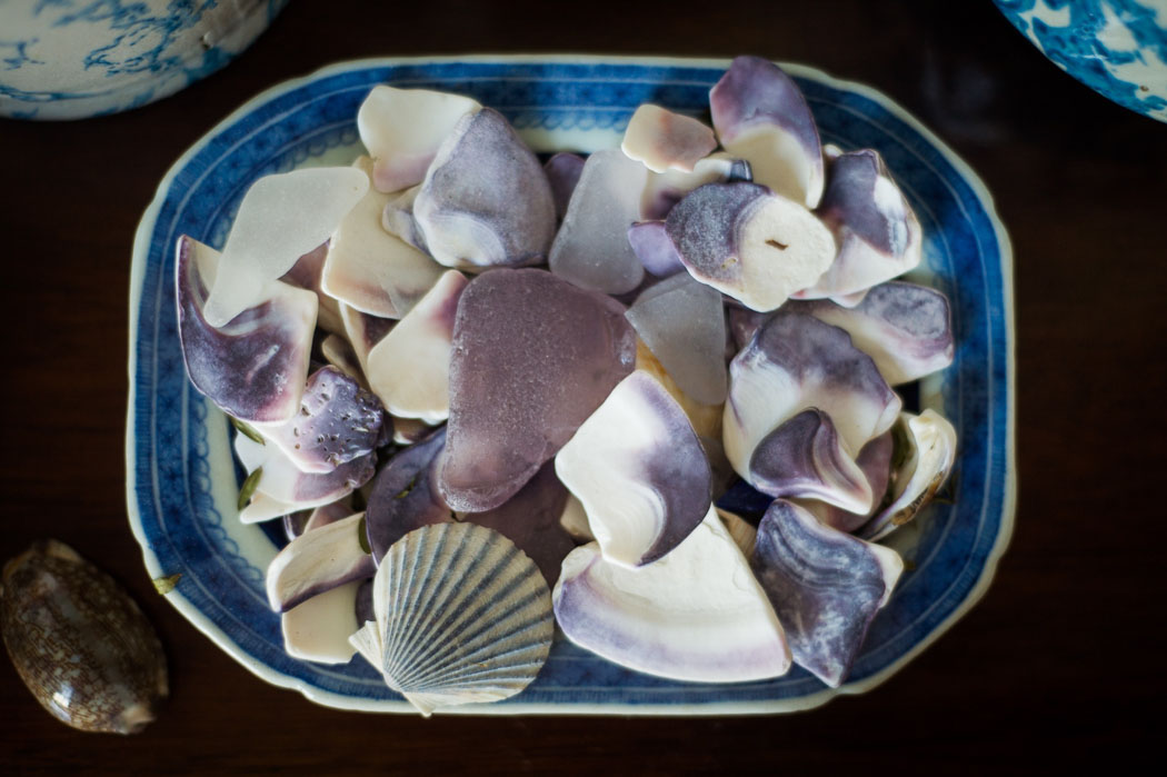 wampum and shells in a dish