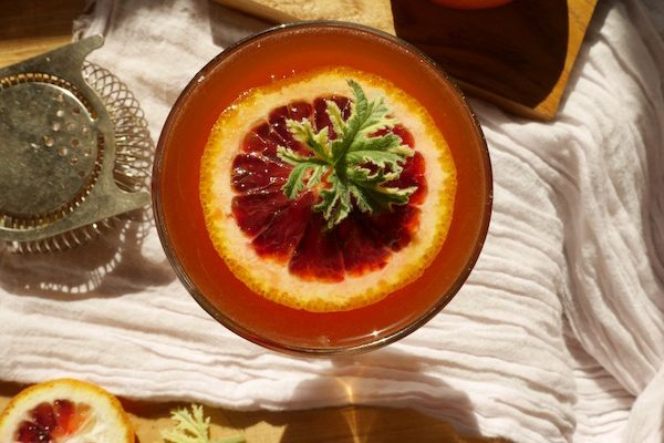 blood-orange Aperol cocktail with geranium garnish